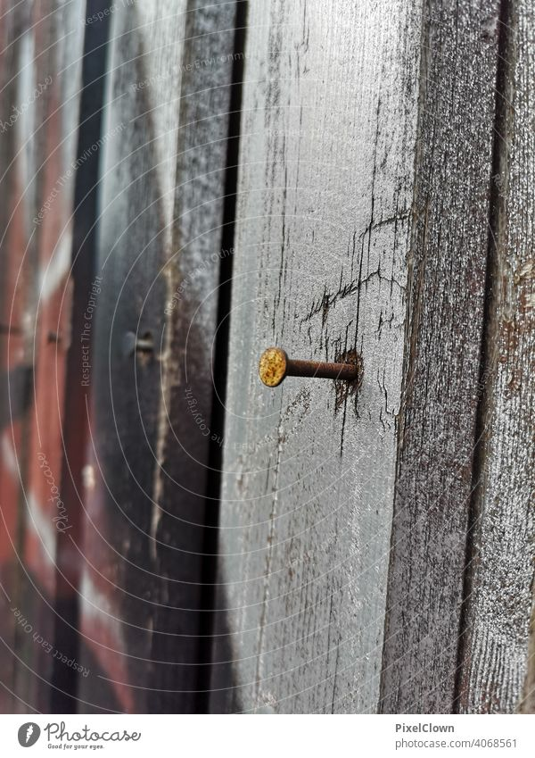 A nail in the wooden wall Nail Wood Craft (trade) Metal Colour photo Close-up Rust Wooden wall Wooden board Copy Space bottom Najaufnahme