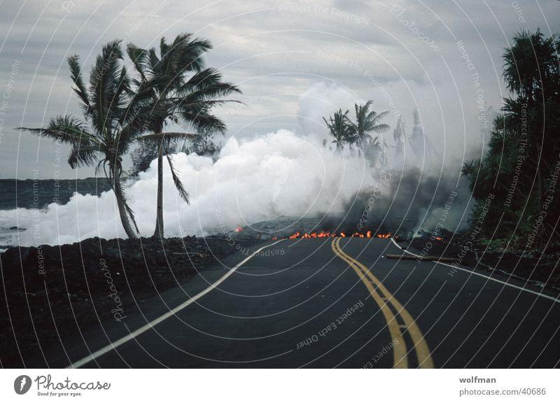 Street Blaze Palm tree Steam Volcano Lava Mountain No through road
