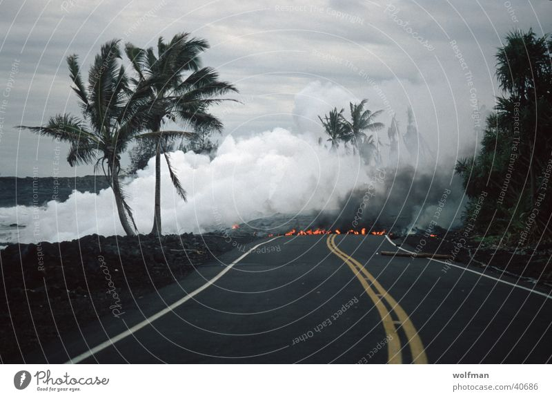 Street Blaze Palm tree Steam Volcano Lava Mountain No through road