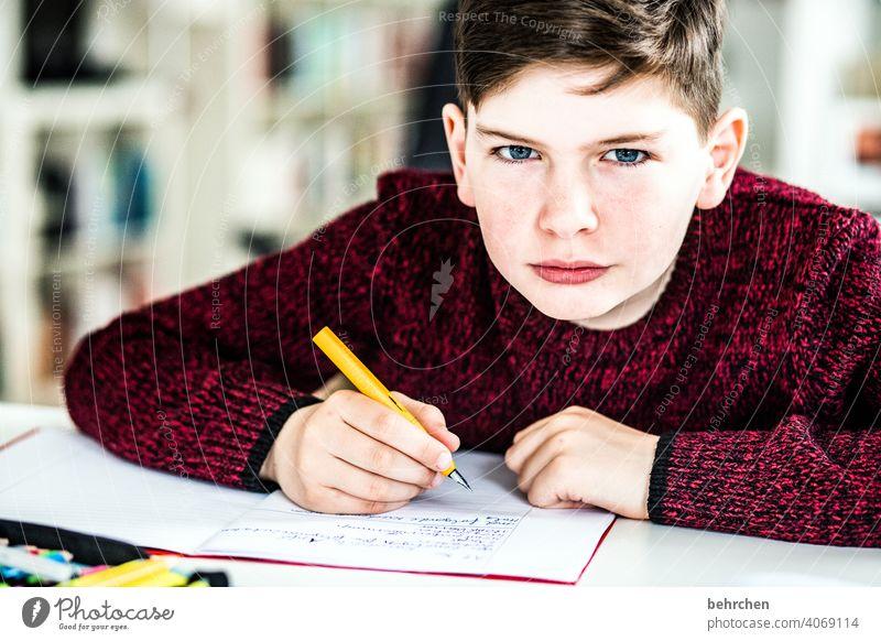homeschooling | start of the week pen pens coronavirus Exasperated Brash Colour photo Interior shot ponder blue eyes Close-up Child Boy (child) Light Contrast