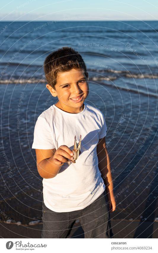 Funny kid showing a crab leg on the beach animal beautiful boy catch caucasian child claw coast coastline crustacean cute hand happy holding little nature ocean