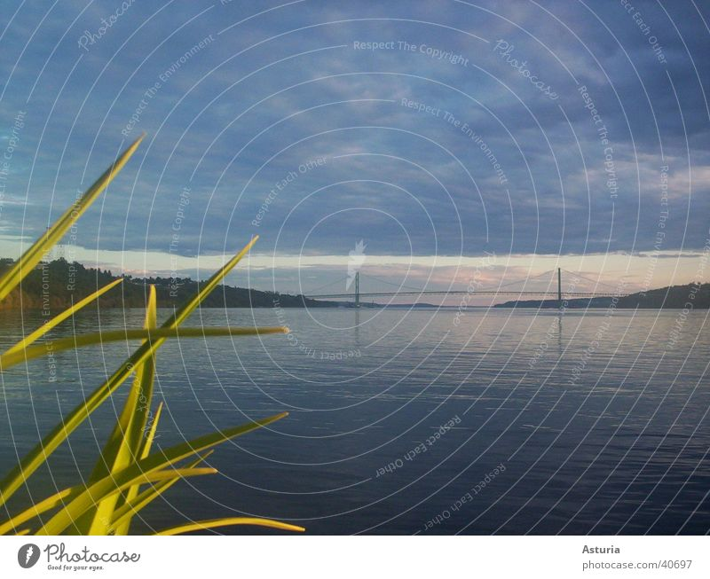 Water Sky Ocean Calm Clouds Relaxation Grass Waves Bridge Corner USA Long Americas Deep Column Peaceful