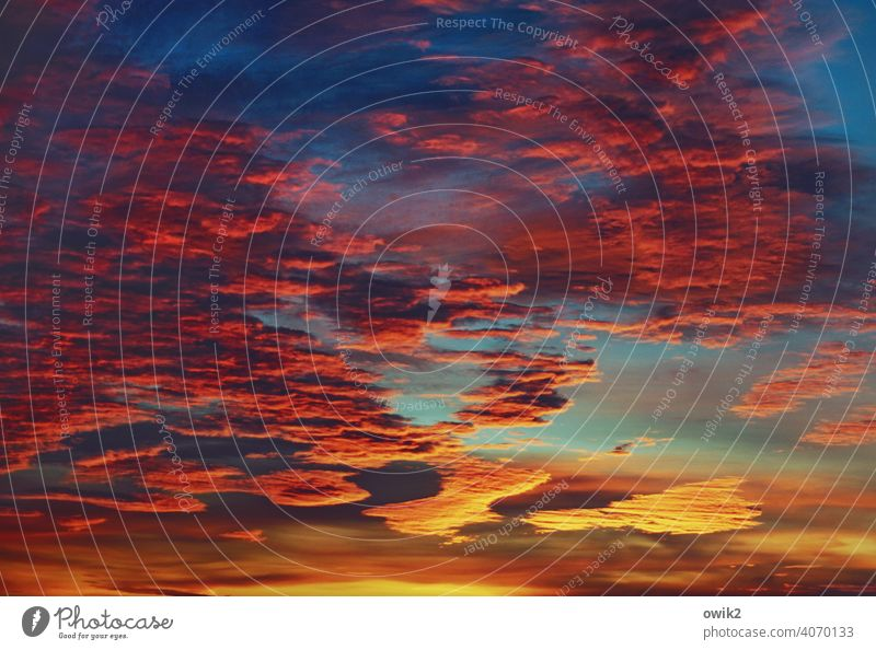 signal colour Cloud formation Exceptional Longing Wanderlust Eternity Kitsch Far-off places bright red wide Hope Idyll Overview Twilight