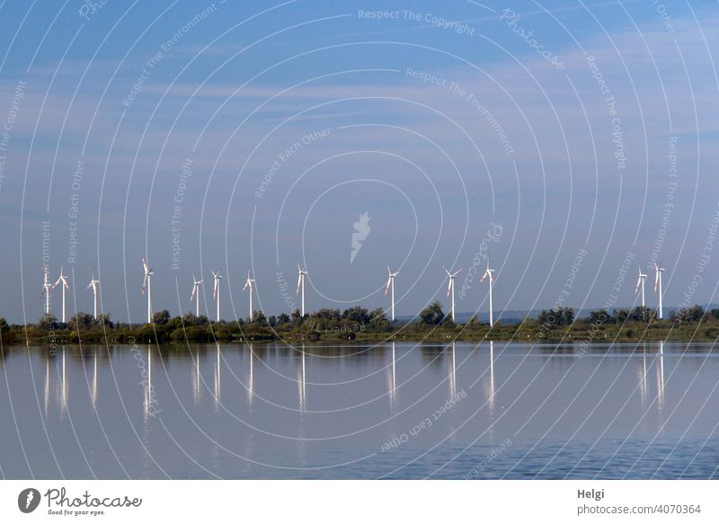 many wind turbines with reflection at the Dümmer lake Pinwheel Wind energy plant Many Energy Energy generation wind power co2 Water Lake Dümmer See Lakeside