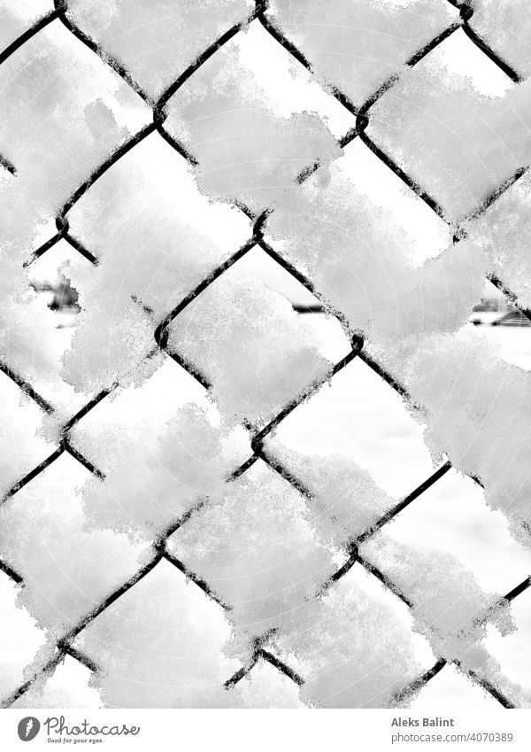 Fence with snow Snow Winter Cold Exterior shot Frost Pattern