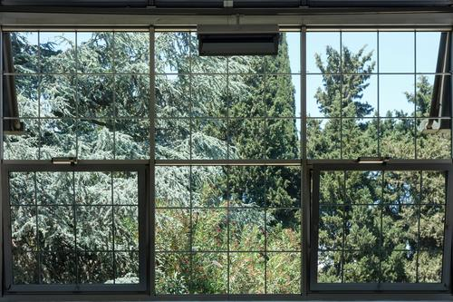 View into the park Window Park trees Sky rungs inside on the outside Longing vacation Italy Protection Green Blue Square Rectangle Classification Black dreams