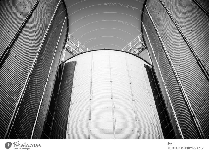 Silos for the storage of grain at an abandoned port facility Grain silo bins Containers and vessels spires Tower Grain harvest Cereal products Harbour Port area