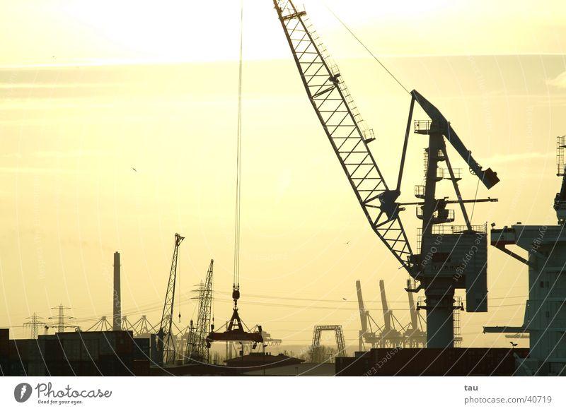 Port of Hamburg Crane Cargo Watercraft Dock Sunset Back-light Far-off places Electrical equipment Technology Harbour Container tele Shipyard