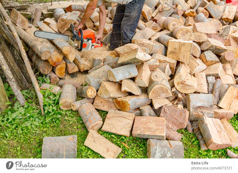 Logger is cutting firewood in the yard with chainsaw Blade Chain Chainsaw Chop Cut Dust Engine Feller Firewood Force Grass Ground Heap Hewer Job Logging Logs