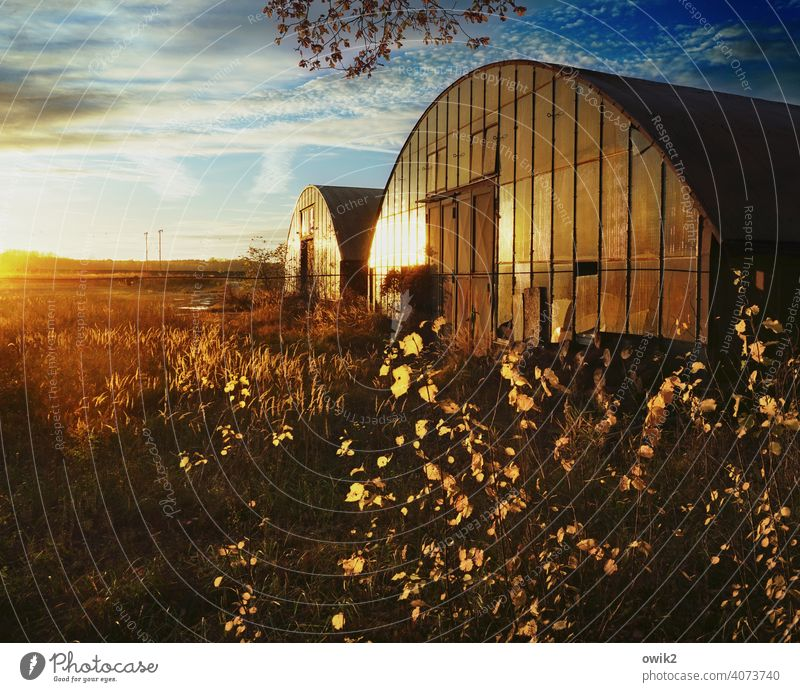 Evening at the Hangar Hall Storage Tin Warehouse Architecture Manmade structures Deserted Exterior shot Colour photo Metal Old Clouds Building Concrete