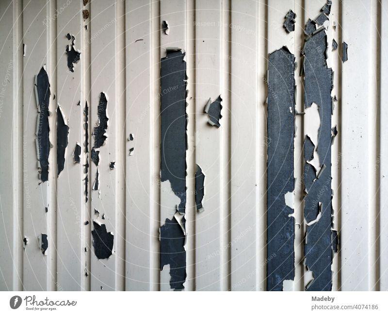 Peeling paint on a garage door in light beige on grey steel in Oerlinghausen near Bielefeld in the Teutoburg Forest in East Westphalia-Lippe Goal Iron Steel