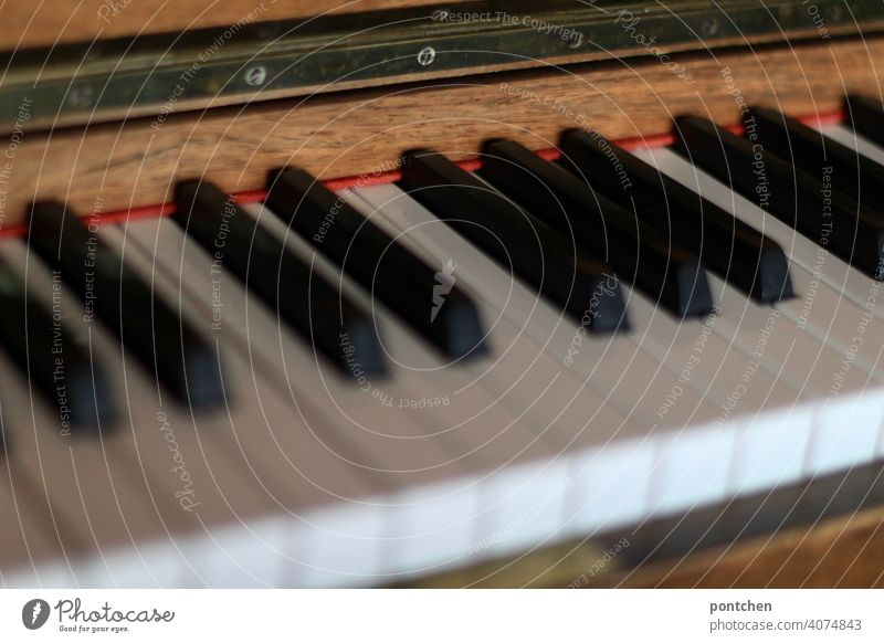 the keys of a piano Piano fumble tool Music Concert Musical instrument Play piano Keyboard instrument classical music Detail Leisure and hobbies