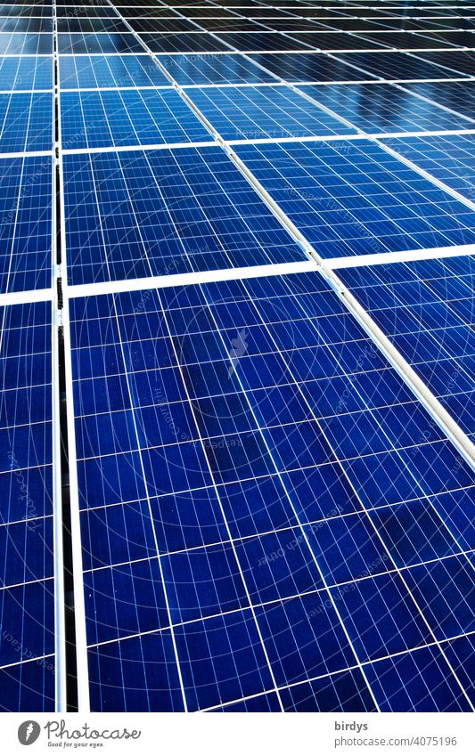 An area of many photovoltaic panels. Solar power plant , many solar panels , photovoltaic photovoltaics Solar Power Solar Energy photovoltaic system