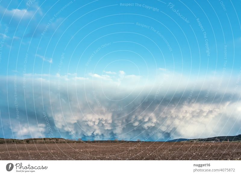 Wallcloud with cumulus clouds over field wall cloud Cumulus Sky Nature Weather Clouds Blue White Environment Climate Atmosphere Heaven cloud landscape