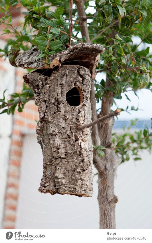 Birdhouse made from the bark of a tree hung home nest nature wood bird branch box park birdhouse forest spring hole garden background natural outdoor wooden