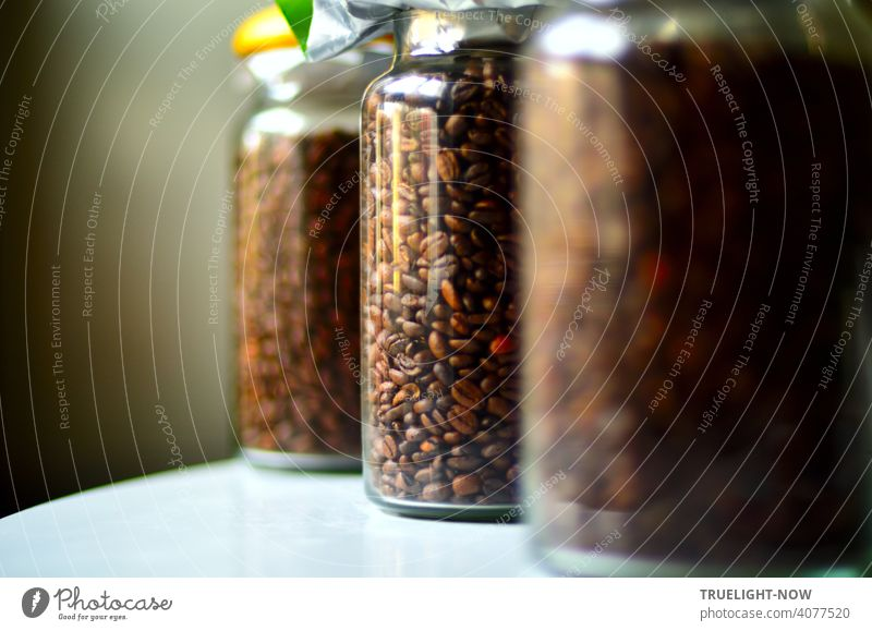 Three cylindrically shaped containers of transparent glass are filled with fresh coffee beans and stand diagonally arranged on a white table against a grey background
