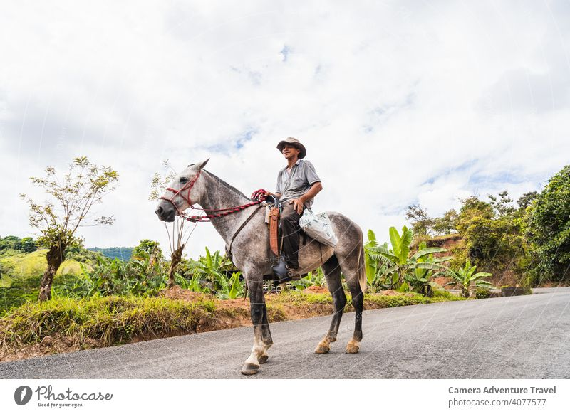 Farmer Man Riding Horse man adult portrait horse livestock agricultural agriculture animal animals background barn country countryside crop cultivation