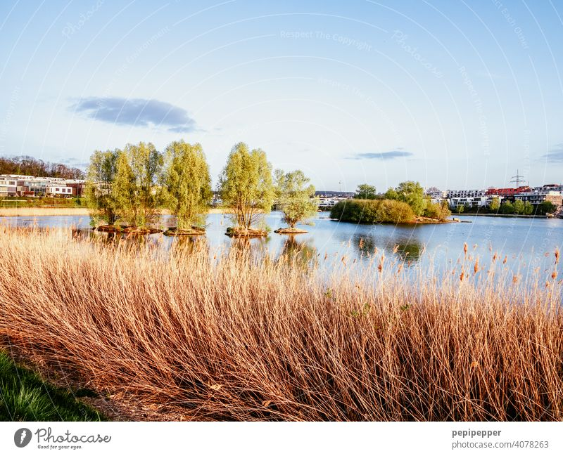 Dortmund Phoenixsee Lake Phoenix Office Office building Office work Lakeside Tourist Attraction Relaxation labour Work and employment work office Workplace