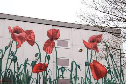 Facade embellished with flower painting corn poppy and some insects house wall extensive Flower motif Corn poppy poppy seed capsules mural painting