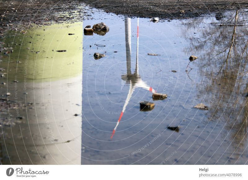 Wind turbines mirrored in a puddle Wind energy plant Pinwheel Power Generation reflection Puddle stones Tree Beautiful weather Renewable energy
