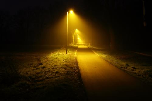 An energy-efficient,LED,infinite-looking,yellow-lit bike path next to a federal highway at night. cycle path Night Yellow Light Street street lamps Modern New