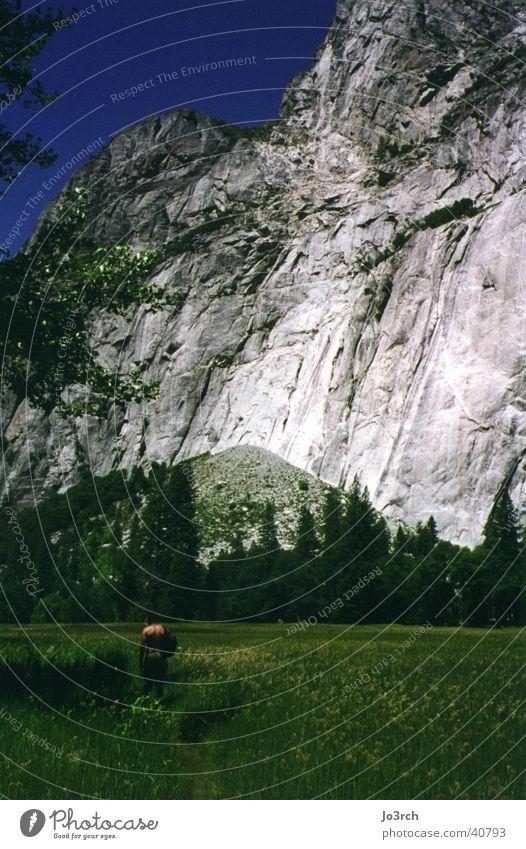 The mountain Meadow Americas Vacation & Travel Hiking Mountain Yosemite Park USA