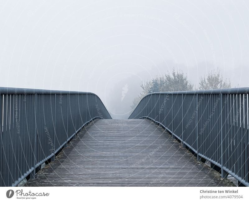 View over the slightly curved footbridge into trees, which are dimly visible in the dense fog pedestrian bridge Bridge Fog Lanes & trails Pedestrian crossing