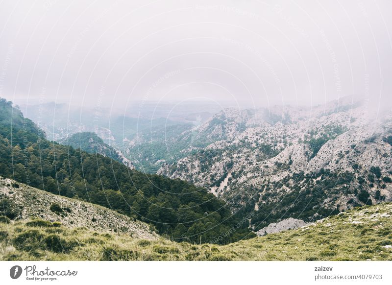 cloudy day with fog in the mountains of the natural park of the ports, in tarragona (spain) eroded layered canyon nature outdoors travel destinations descent