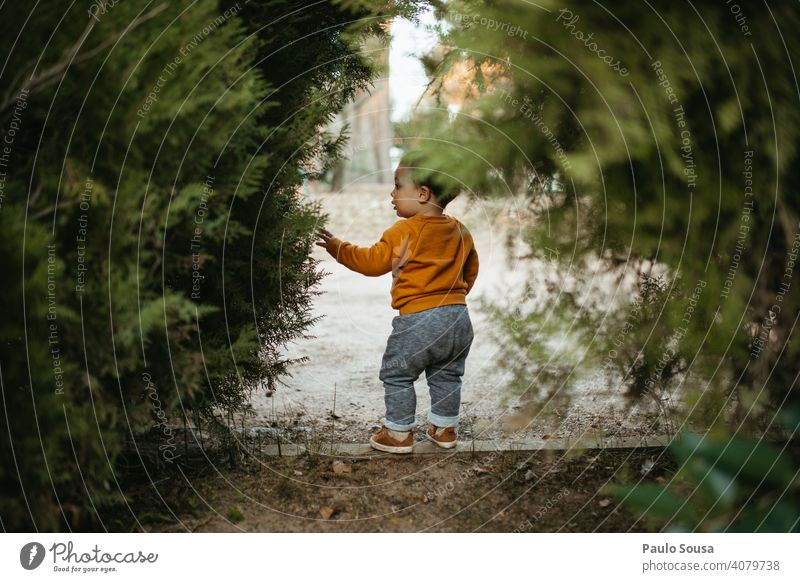 Child exploring the park childhood Caucasian Rear view 1 - 3 years Infancy Colour photo Toddler Human being Lifestyle Joy Playing Happiness Multicoloured Day