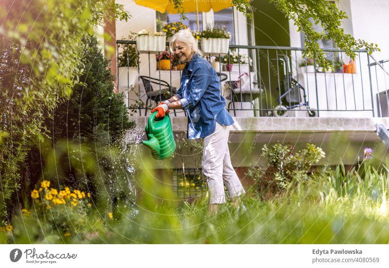 Senior woman watering plants in her garden outdoors backyard outside lawn grass working gardening nature hobbies gardener enjoying active weekend activity