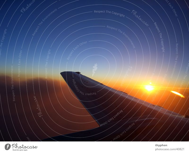 Sun Air Aviation Wing Sunset
