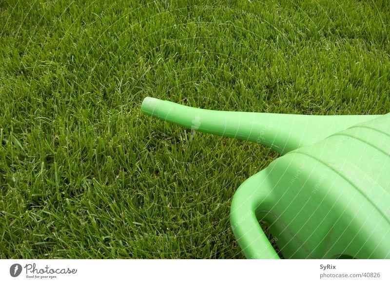 gardening Watering can Meadow Gardening Jug Lawn