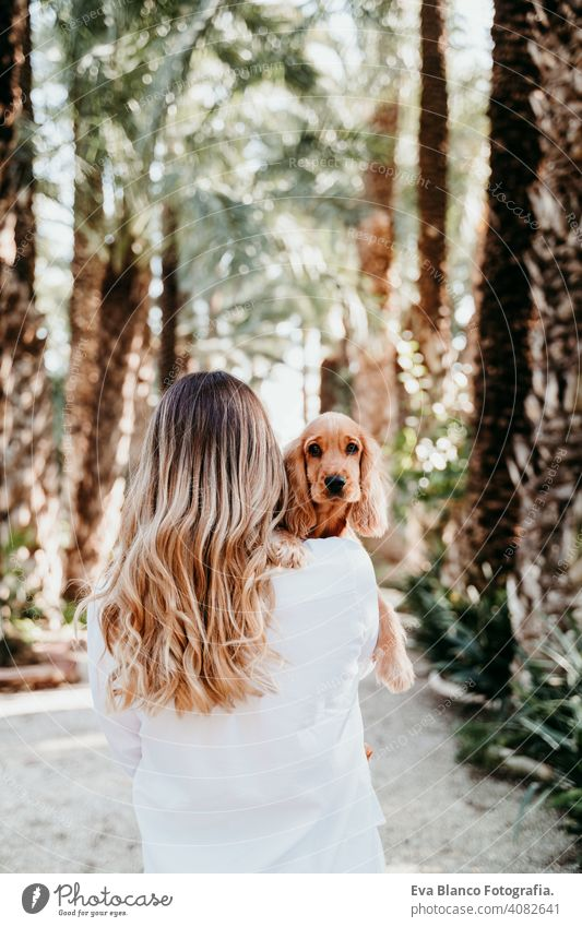 young woman and her cute puppy of cocker spaniel outdoors in a park dog pet sunny love hug smile back view kiss breed purebred beautiful blonde brown lifestyle