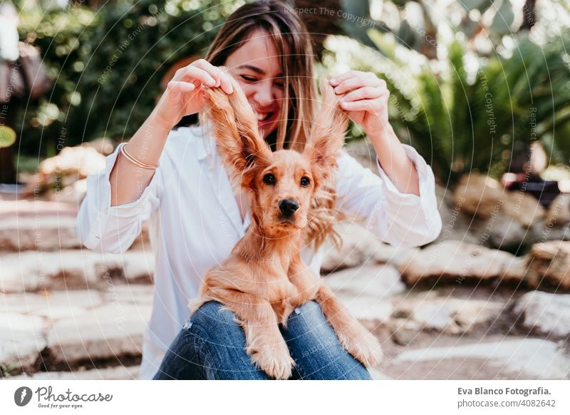 young woman and her cute puppy of cocker spaniel outdoors. Funny dog big ears funny pet park sunny love hug smile back view kiss breed purebred beautiful blonde