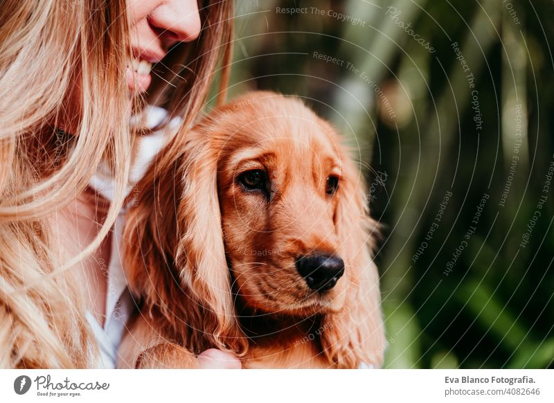 young woman and her cute puppy of cocker spaniel outdoors dog pet park sunny love hug smile back view kiss breed purebred beautiful blonde brown lifestyle