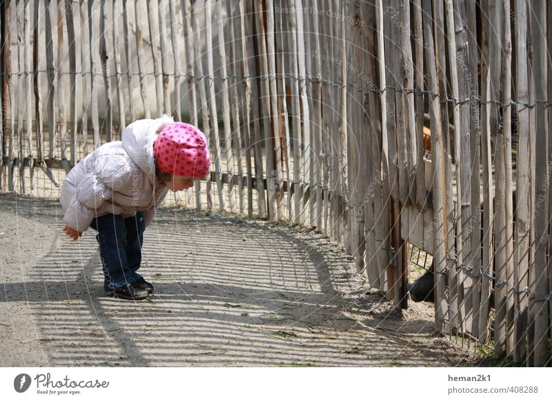 Human being Child Girl Animal Feminine Leisure and hobbies Infancy Observe Curiosity Cap Toddler Discover Zoo Interest Trunk Petting zoo
