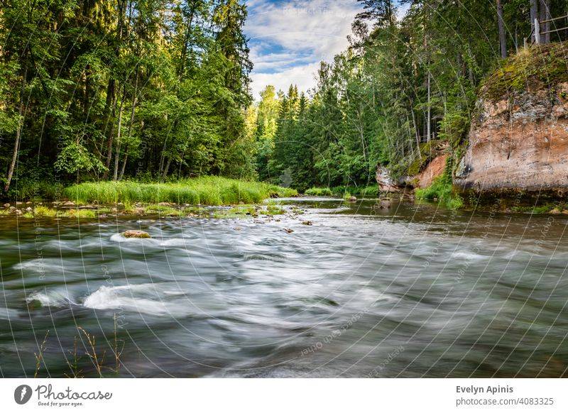 Stream of water is flowing in Amatas River between yellow sandstone outcrops and green forest during sunny summer morning at Latvia stream flowing water sky