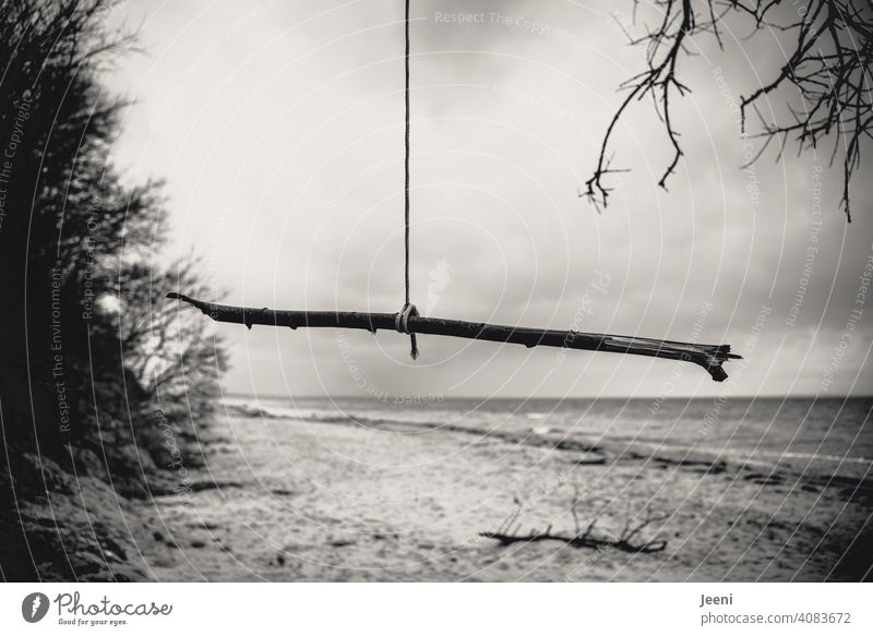 Just hang out on the beach today Baltic Sea Rain Rope Branch Hang Suspended Beach Ocean chill relax relaxing coast Sky Baltic coast Nature Landscape