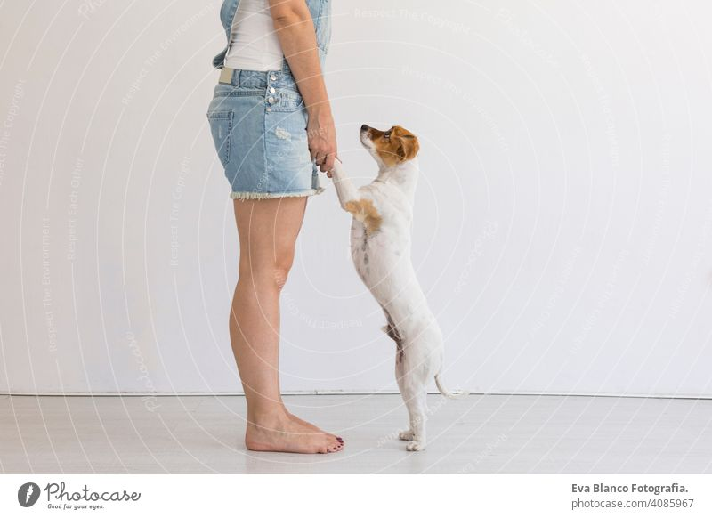 Beautiful young woman playing with her little cute dog at home. Lifestyle portrait. Love for animals concept. white background. pet happy beautiful puppy