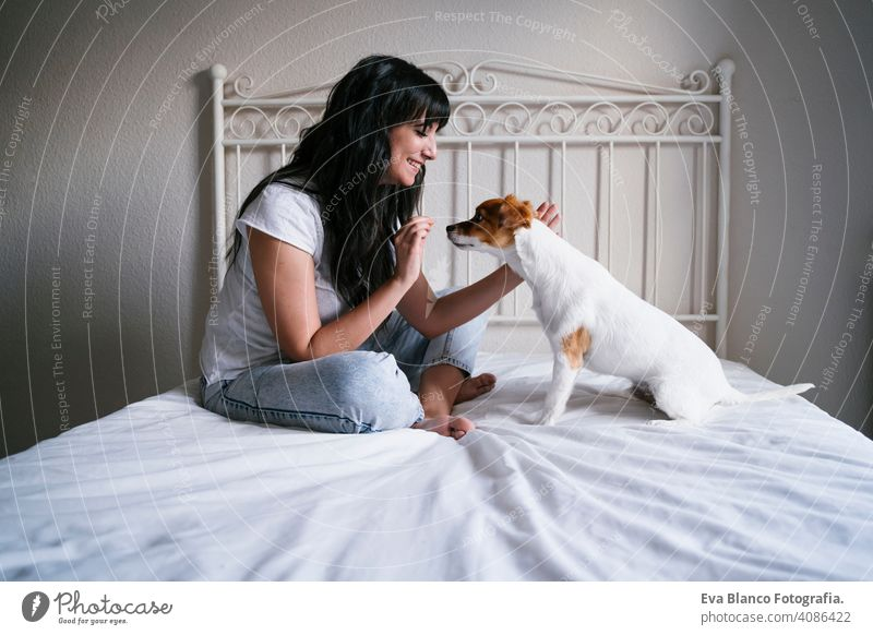 young caucasian woman on bed with her cute small dog playing and giving him treats. Love for animals concept. Lifestyle indoors girl fun love lovely family