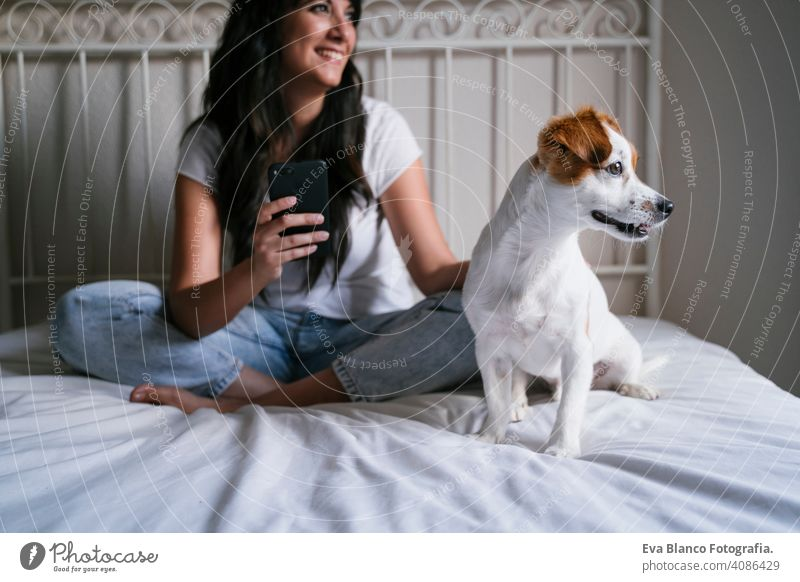 young caucasian woman on bed using mobile phone. Cute small dog lying besides. Love for animals and technology concept. Lifestyle indoors girl fun love lovely