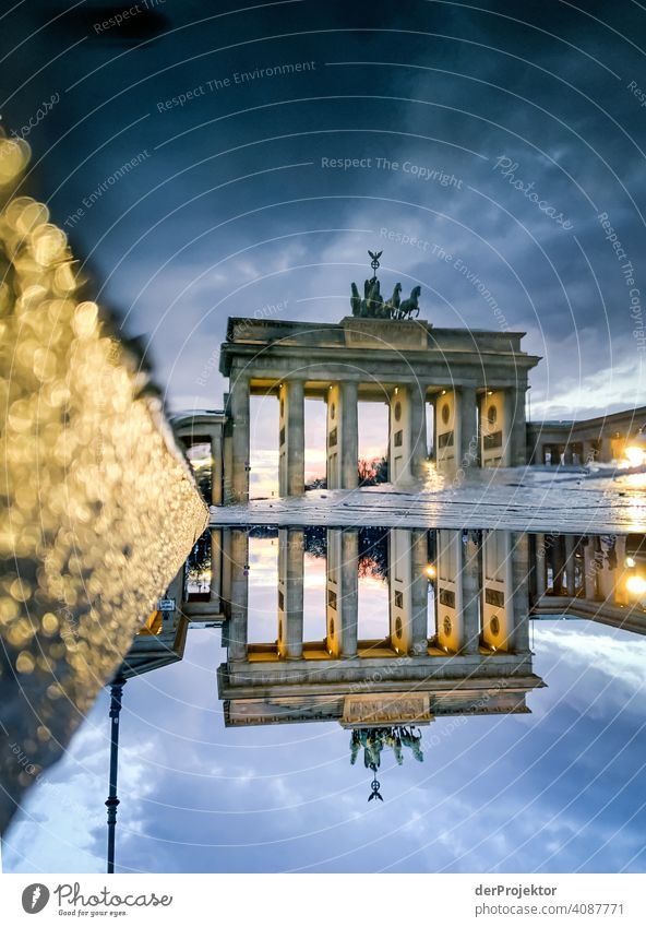Brandenburger Tor in der Reflektion einer Pfütze IV Central perspective Reflection Shadow Copy Space top Twilight Artificial light Light Copy Space right