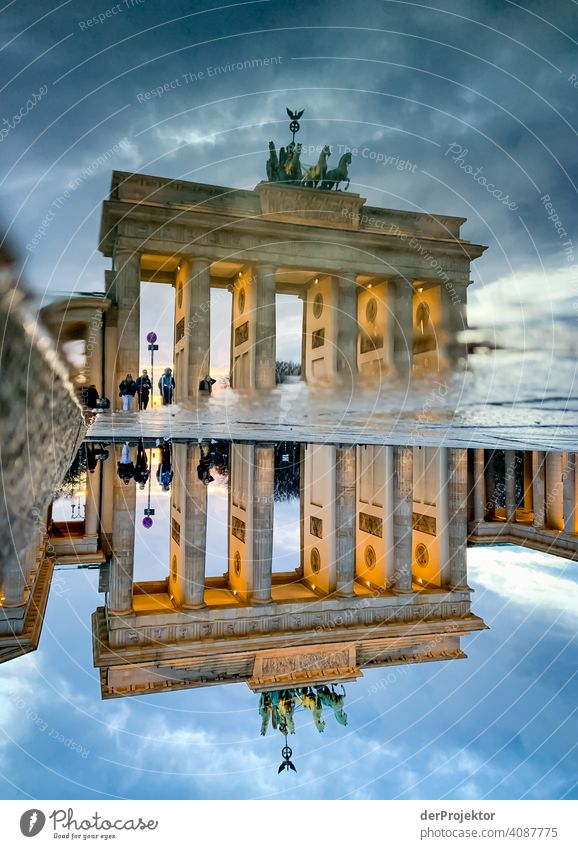 Brandenburger Tor in der Reflektion einer Pfütze I Central perspective Reflection Shadow Copy Space top Twilight Artificial light Light Copy Space right