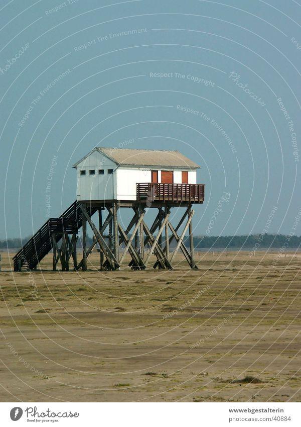 Water Ocean Beach Wind Weather Europe North Sea Mud flats Lugworms