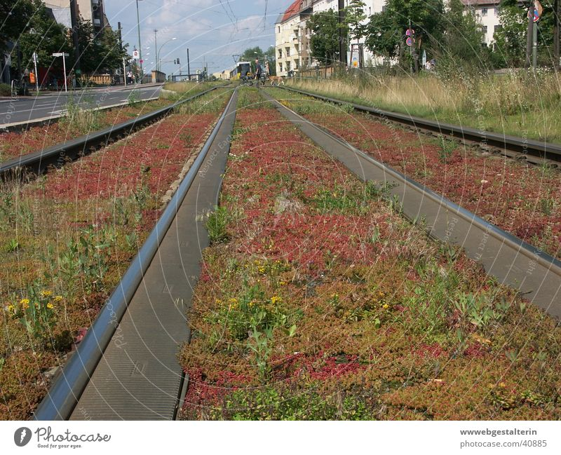 BerlinPrenzlauerBerg Railroad tracks Town Tram Far-off places Longing Vacation & Travel