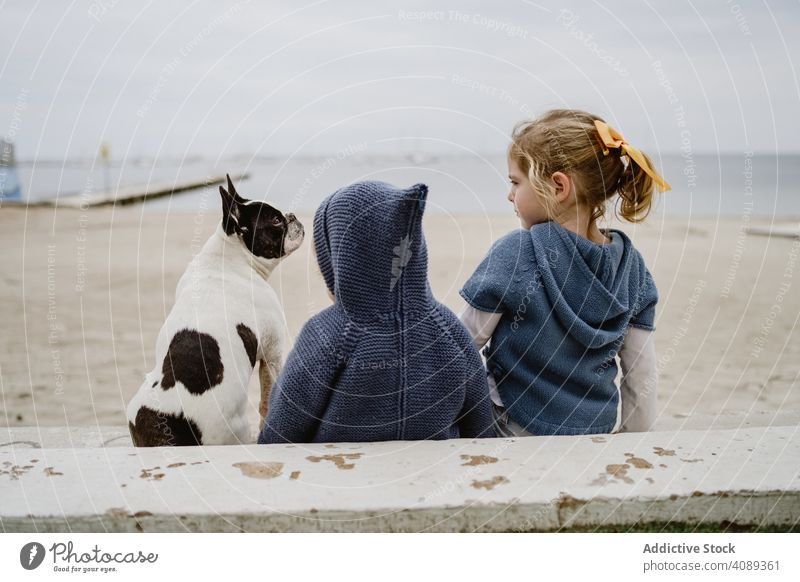 Kids hugging dog on beach kids friendship love pet sea sitting obedient baby french bulldog casual children lifestyle leisure embracing rest relax puppy loyal
