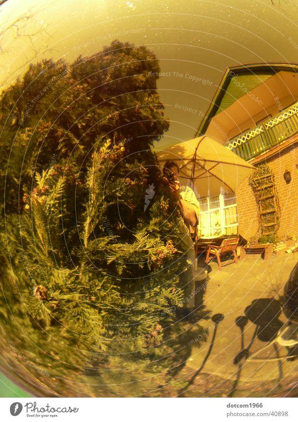 spherical world Yellow Summer Terrace Living or residing Sphere reflection Garden