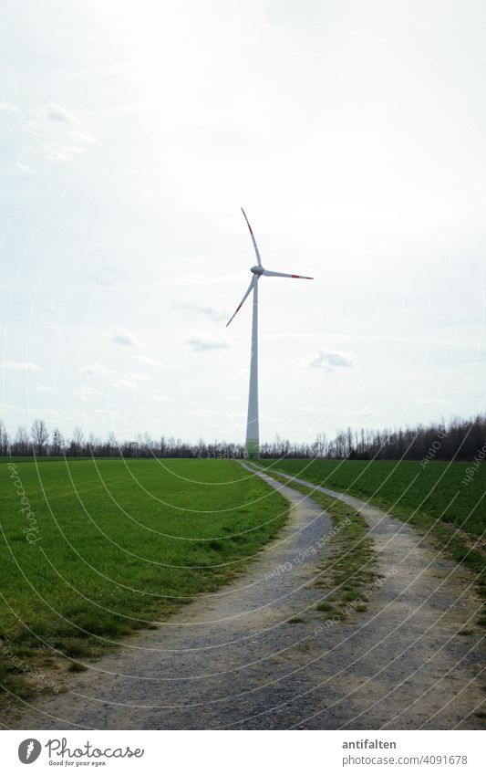 The way to the future Pinwheel Energy Renewable energy Energy industry Wind energy plant Sky Electricity Environmental protection Technology Eco-friendly