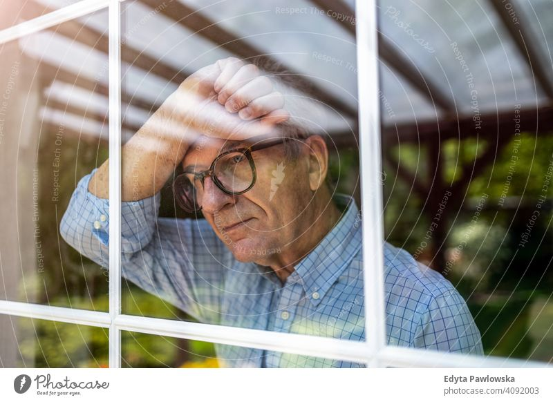 Senior man looking out of window at home senior elderly grandfather old pensioner retired retirement aged mature house male people lifestyle domestic life