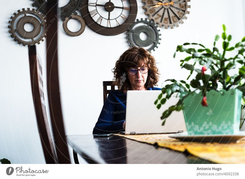 Middle-aged woman working with laptop computer in her living room. middle aged home teleworking sitting indoor communication female mature business desk